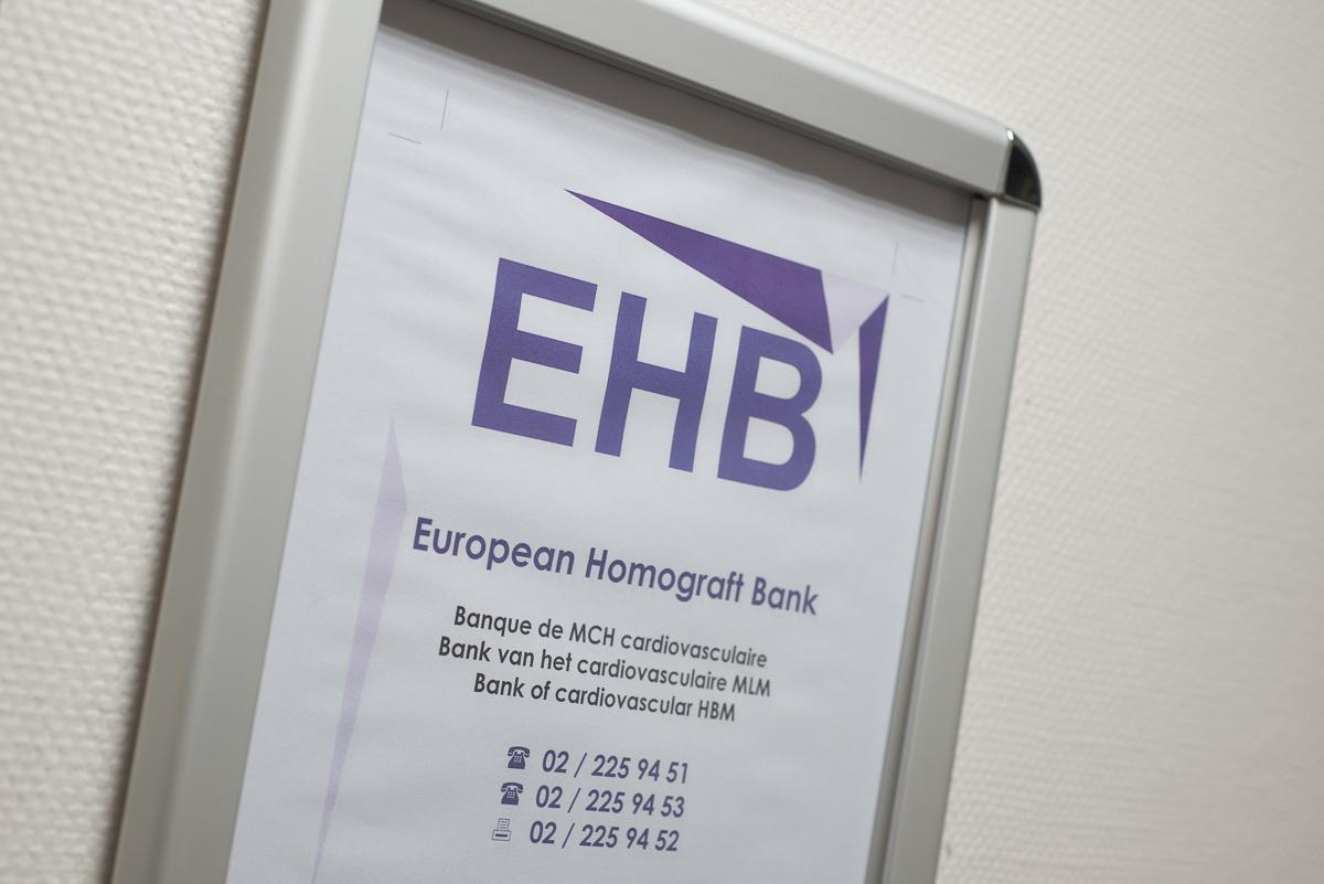 EHB panneau